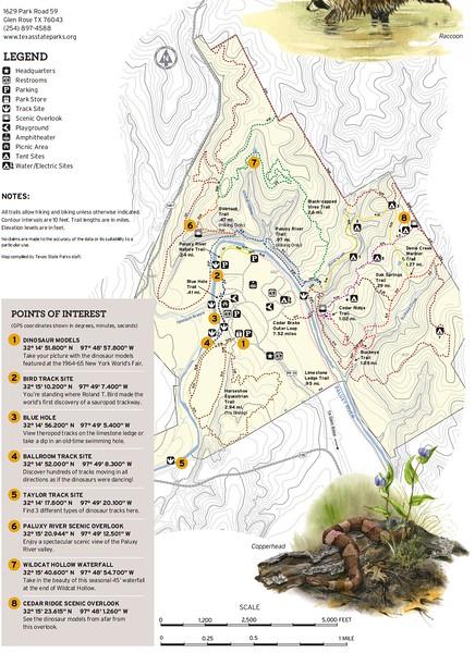Dinosaur Valley State Park (Trails)