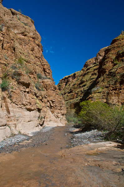 Box Canyon, AZ6.jpg