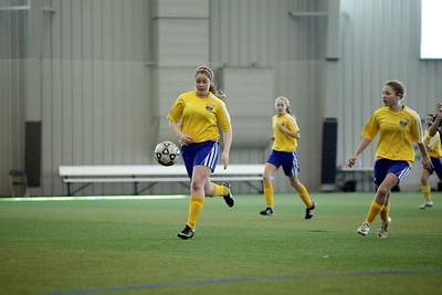 Girls U15 Carpathia Kickers
