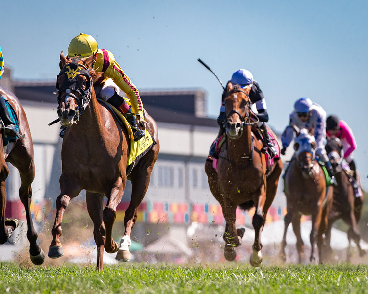 Cambria (Speightstown), Tyler Gaffalione up, wins the Kentucky Downs Juvenile Turf. Wesley Ward, trainer. Stonestreet Stables, owner.