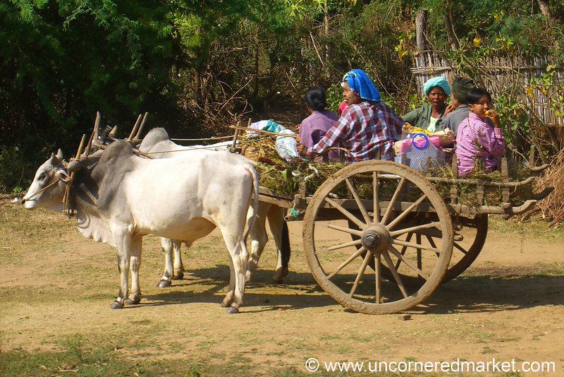 People on Oxen Cart - Mandalay, Burma