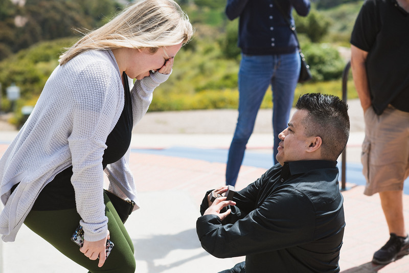 Mike & Angela Proposal