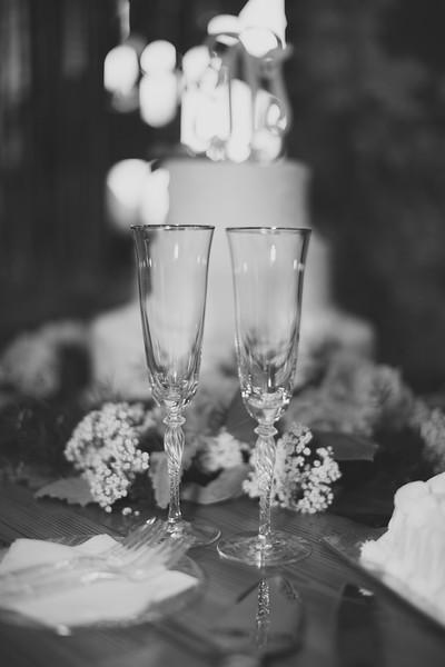 unmutable-wedding-decosta-monroe-ga-0579-2.jpg