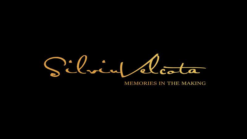 SilviuVelcota Logo.jpg