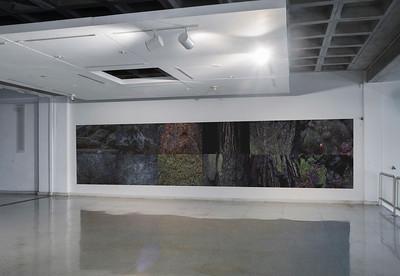 Senescere at Museo de Arte Contemporáneo del Zulia (Maczul), Maracaibo, Venezuela - November 2019