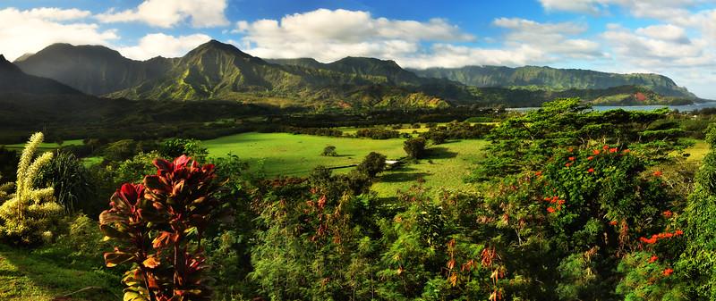 Road side view of Princeville Valley, Kauai, Hawaii