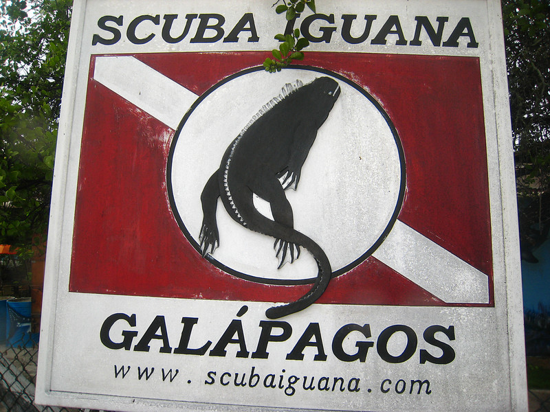 Diving in the Galapagos (284 of 392)
