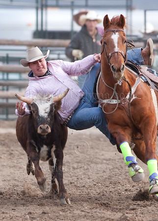 Steer Wrestling DMC 2010