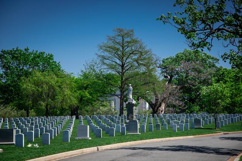 Arlington-167.jpg