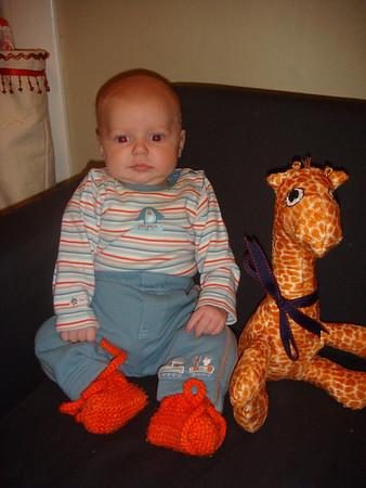 Theo Giraffe Photos