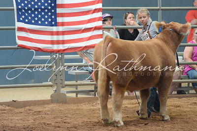 2016 Battle of the Cattle :: Belton