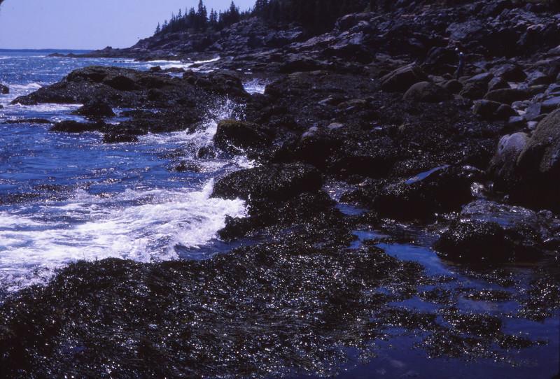 Nova Scotia 1983 - 153.jpg