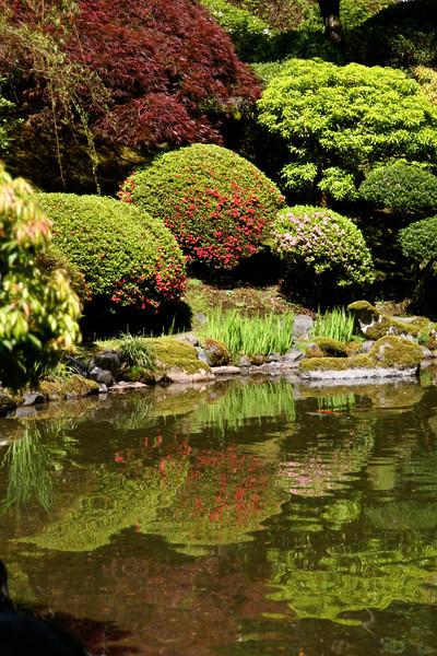 Portland Japanese Garden 6-3-11  1757.jpg