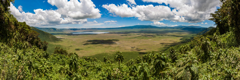 Peter-West-Carey-Ngoronogoro Crater.jpg