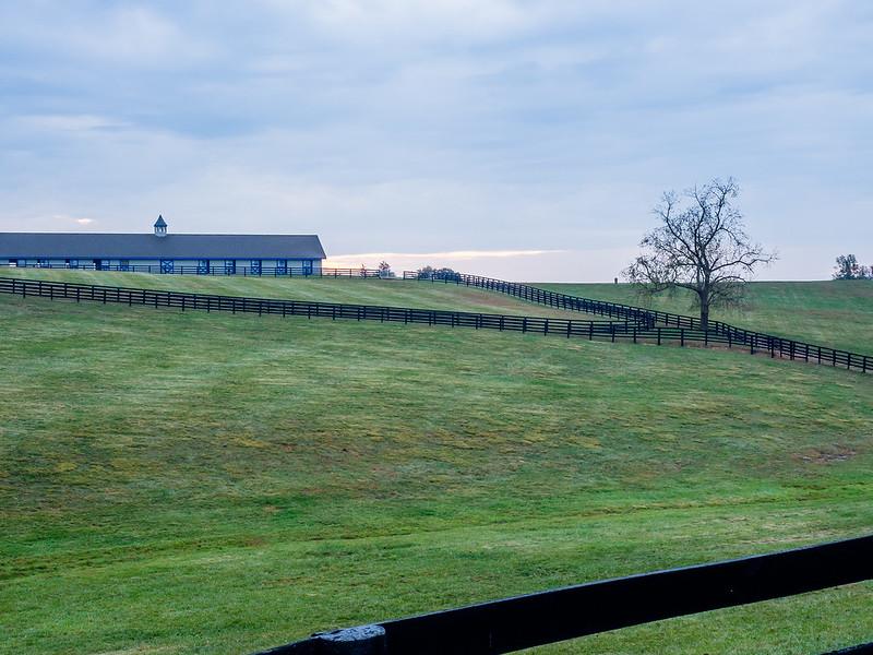 04 Oct 16 Horse farm (1 of 1).jpg