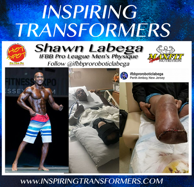inspiring_transformers_Shawn_Labega.png