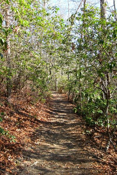 John Rock Trail -- 2,700'