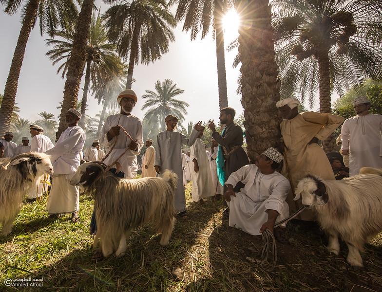 FE2A1654-1-Saroor-Samail- Oman.jpg