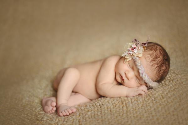 Elena's Newborn Portraits