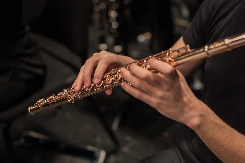 181111 Northbrook Symphony (Photo by Johnny Nevin) -3645.jpg