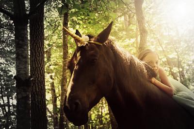 Ginger Horse Farm unicorn sessions 2020