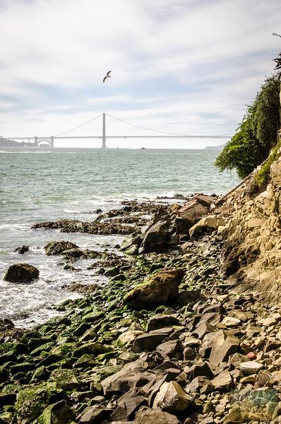20141016_Alcatraz_0191.jpg