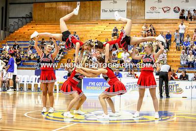 2014 Fury Cheer Squad