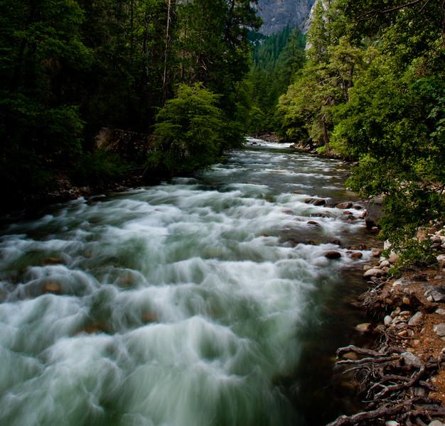 The California Sierra
