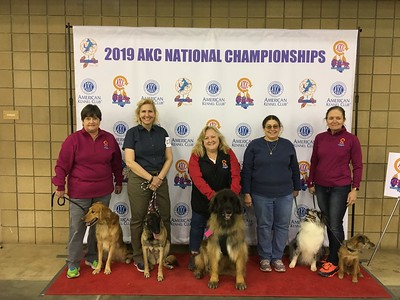 2019 Haughton & AKC Nationals
