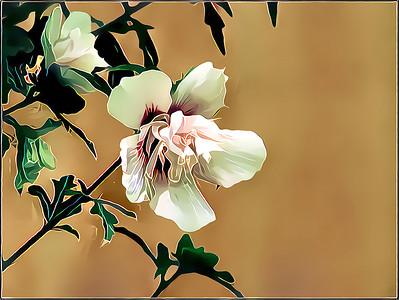 Oleanders - Rhododendrons