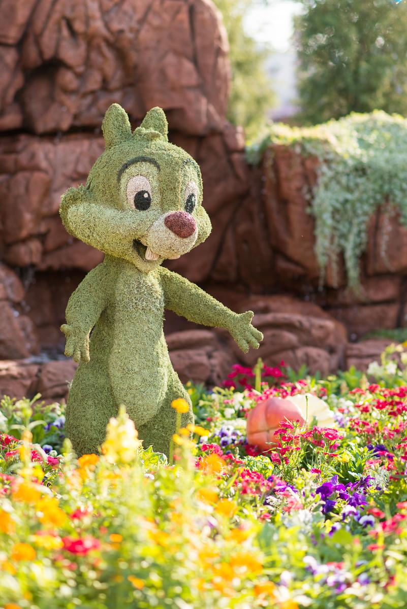 Chip Topiary - Epcot Flower & Garden Festival 2016