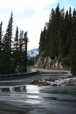 Chinook Pass and Area