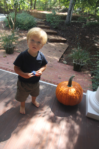 Elliot learns that a pumpkin is not an apple