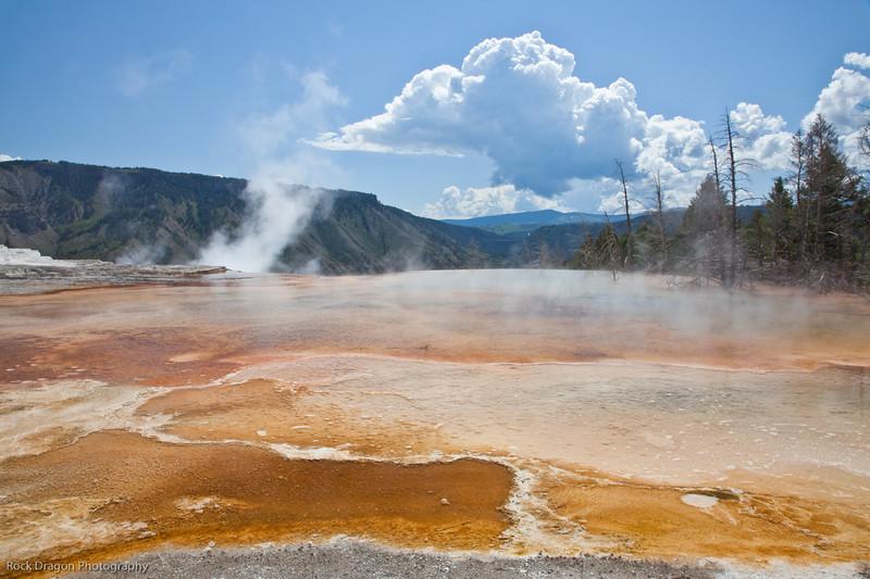 Yellowstone-27.jpg