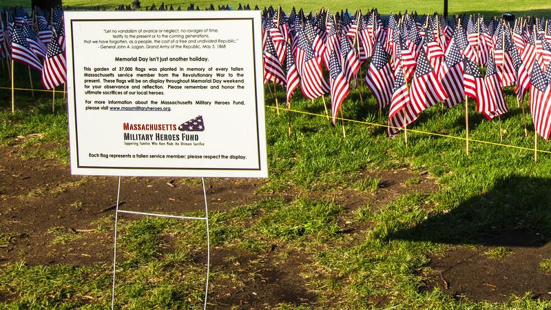 Boston Common Memorial weekend 8.jpg
