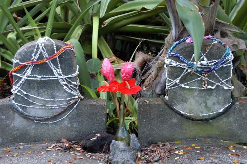 188- 20080410- Hawaii 15- Enroute to Hilo- Hawaii Tropical Botanical Gardens DSC_2800.jpg