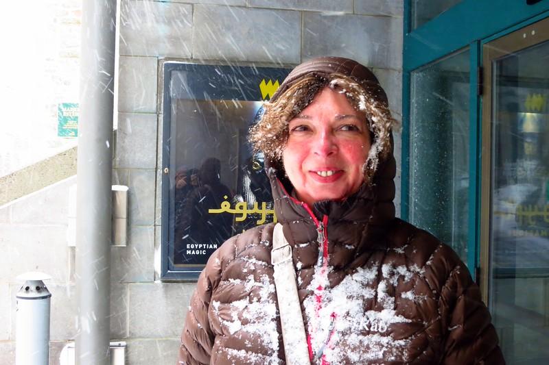 Caught in the Urban Snow Storm; Quebec City