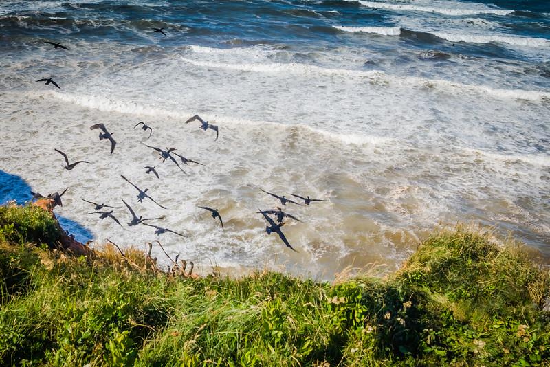 Travel Photography Blog: Prince Edward Island – Cape Tryon