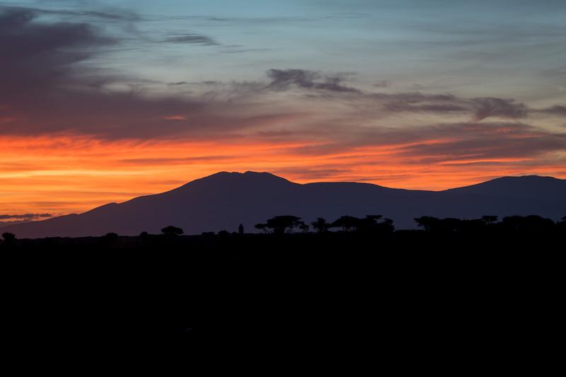 Tanzania_Feb_2018-323.jpg