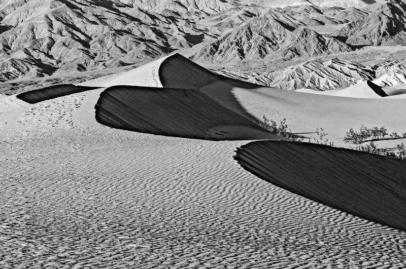 SandDunes-18.jpg