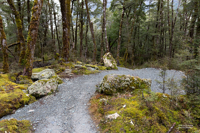 Routeburn Track, Mt Aspiring NP, SI, NZ, Aug 2018-4.jpg
