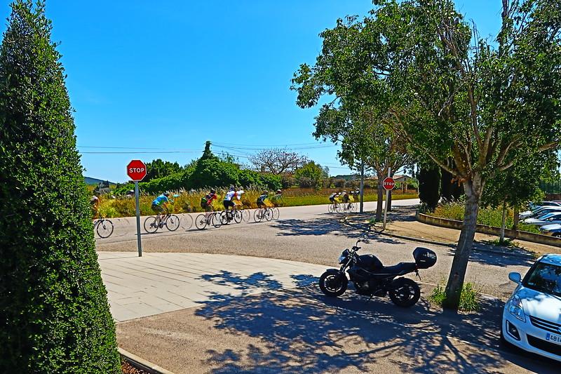 Mallorca Bikes.JPG