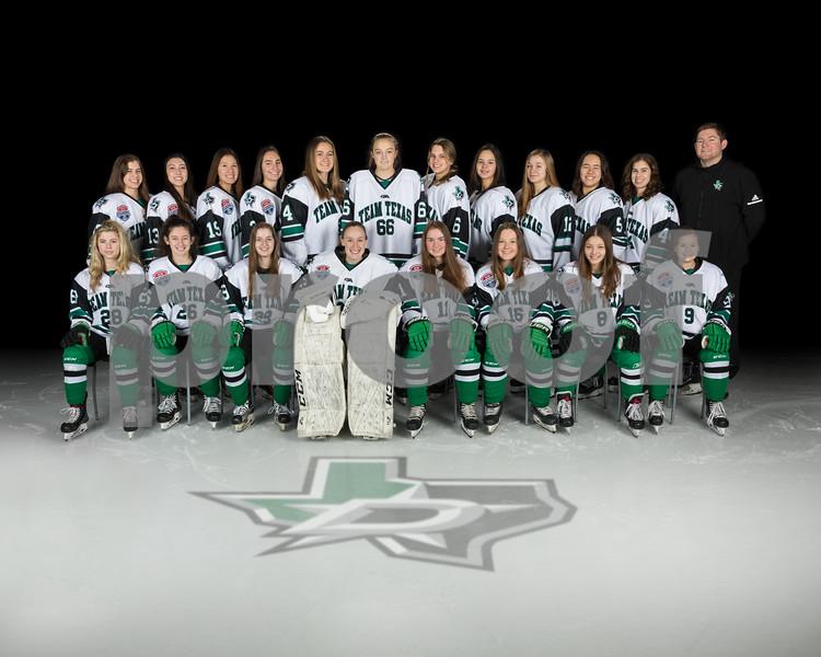 2020-01-11 DSE Girls Team Texas Hesse