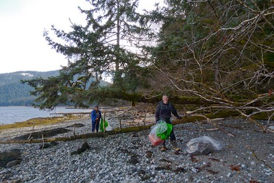 Volunteers and A Tree Growing On A Fallen Tree April 2013, Cynthia Meyer, Chichagof Island, Alaska