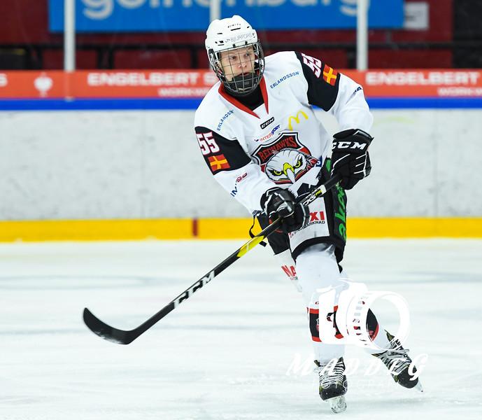 J20 SuperElit Södra: Frölunda  HC - IF Malmö Redhawks 18-11-28