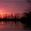 Evening sun over Lakeside Balderton © 2012
