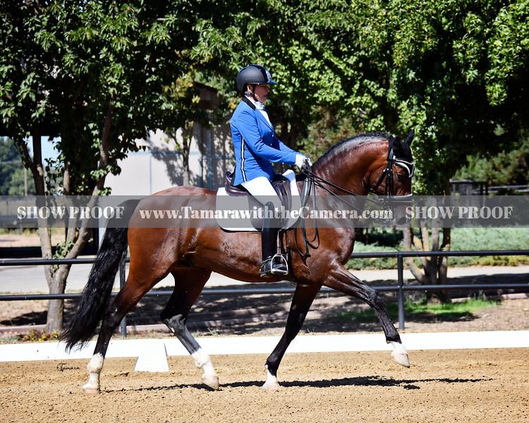 SVE 19 Espartaco Los Arcos 247.jpg