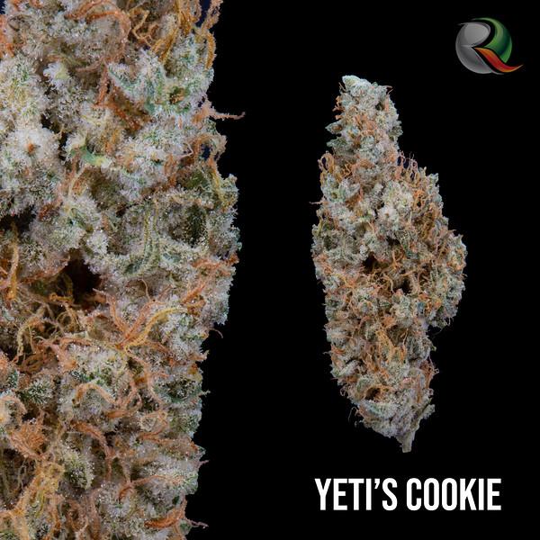 Yetis cookie.jpg