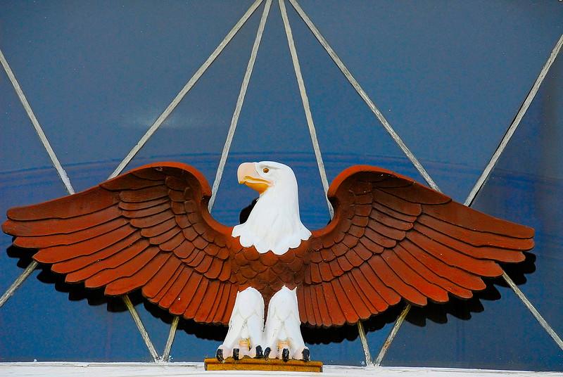 Spread Eagle.jpg