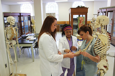 PA students in lab